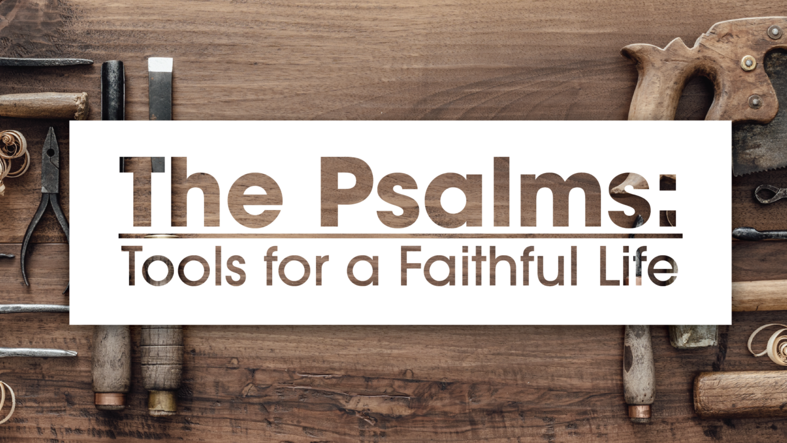 The Psalms: Tools For A Faithful Life